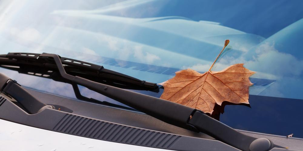 3 Benefits of Replacing Your Wiper Blades - Automotive Supply Center Ltd