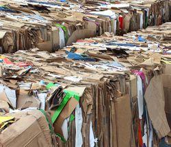 cardboard recycling Harrisonburg VA