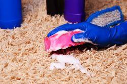 Dawsonville-Georgia-rug-cleaning
